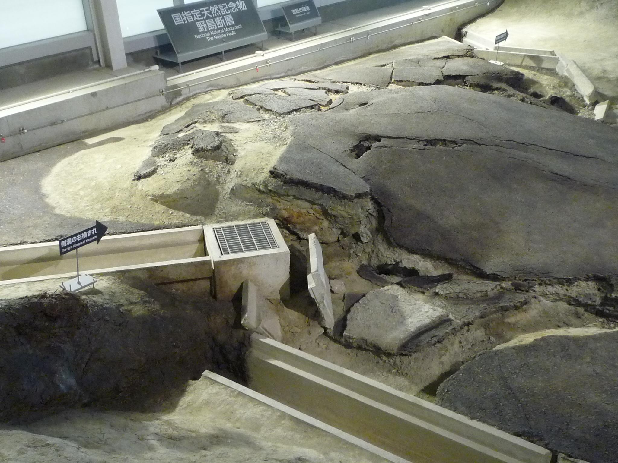 阪神淡路大震災後の復興状況視察の様子